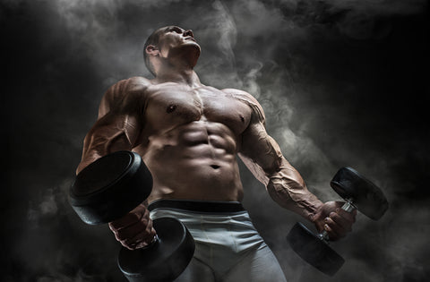 a bodybuilder holding a pair of dumbbells