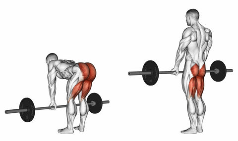 Deadlifts with a barbell, legs straight. 3D illustration