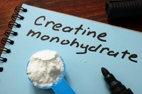 Notebook with sign Creatine monohydrate and scoop with white powder.