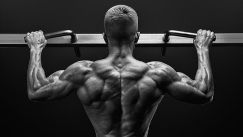 Black and white image of power muscular bodybuilder guy doing pullups in gym