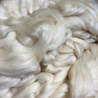 Polwarth/Silk 75/25 Combed Top - New!