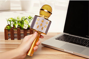 Portable KTV Microphone with Bluetooth Speaker