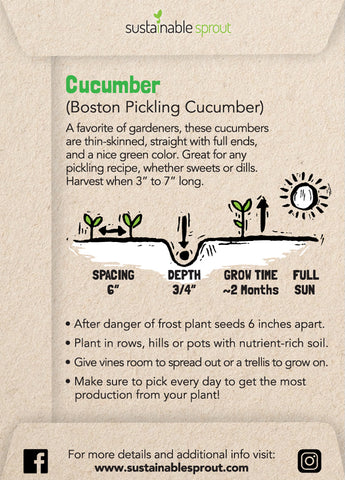 Cucumber Sustainable Sprout