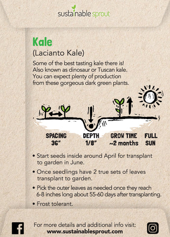 Kale Seeds Instructions