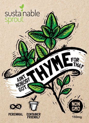 Thyme Seeds Planting Instructions