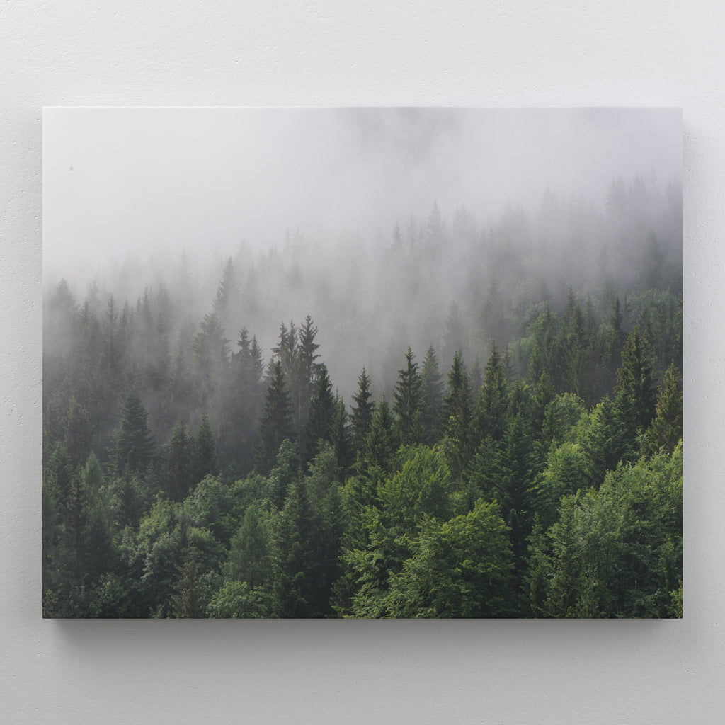 Caspian Canvas