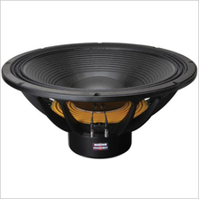 "B&C 21SW152 21"" Professional Subwoofer Driver"