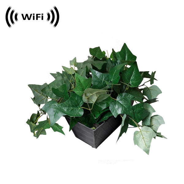 WF-540 : 1080p IMX323 Sony Chip Super Low Light Wireless Spy Camera with WiFi Digital IP Signal, Recording & Remote Internet Access (Camera Hidden in a Fake Plant)