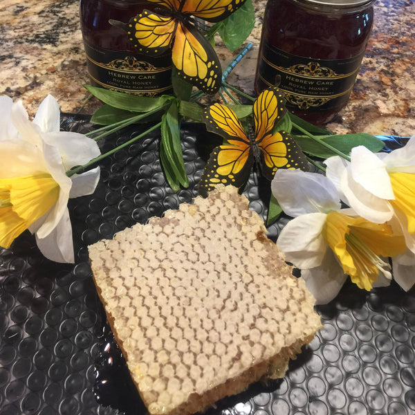 New item Hebrewcare Honeycomb