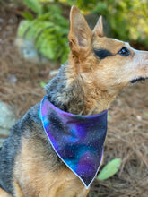 Stargazer Tie on Dog Bandana