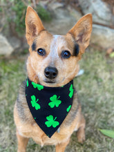 Tie on Lucky 🍀 Dog Bandana
