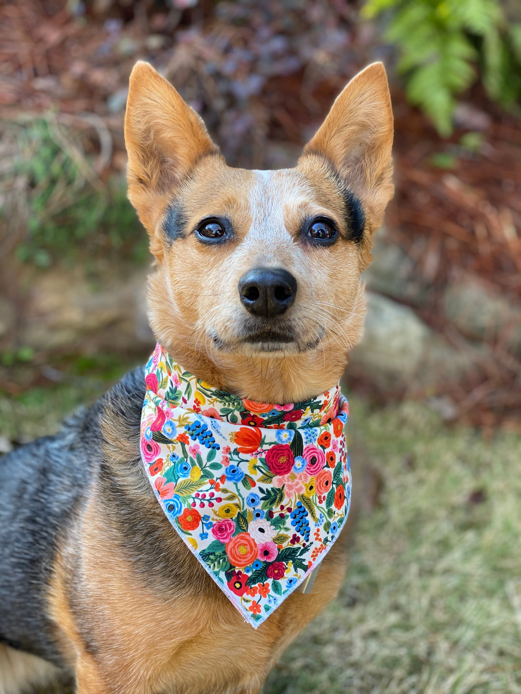 Tie on Garden Party Dog Bandana
