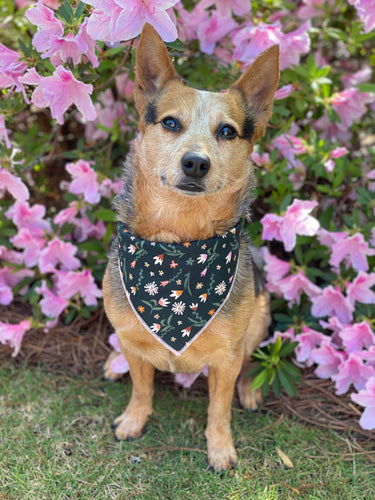 Green Wild flower tie on Dog Bandana