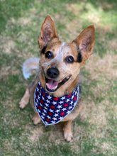 Tie on Patriotic Dog Bandana