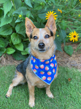 Tie on Georgia Peach 🍑 Dog Bandana