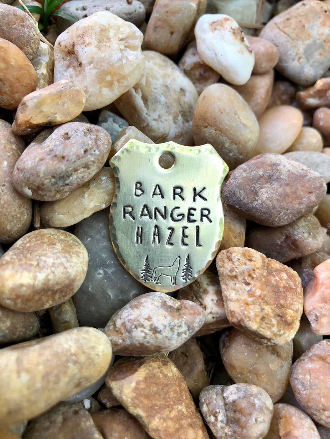 Bark Ranger Dog Tag