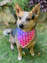 Rainbow Mermaid Tie on Dog Bandana