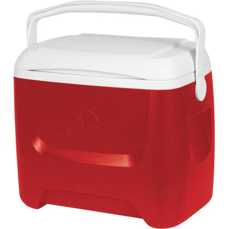 28 quart rental cooler or beach or camping equipment.