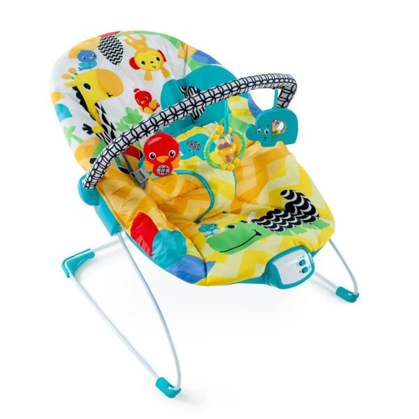 Baby bouncer. Maui Baby rentals