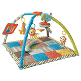 baby rental gear, Maui. playgym for babies. toys