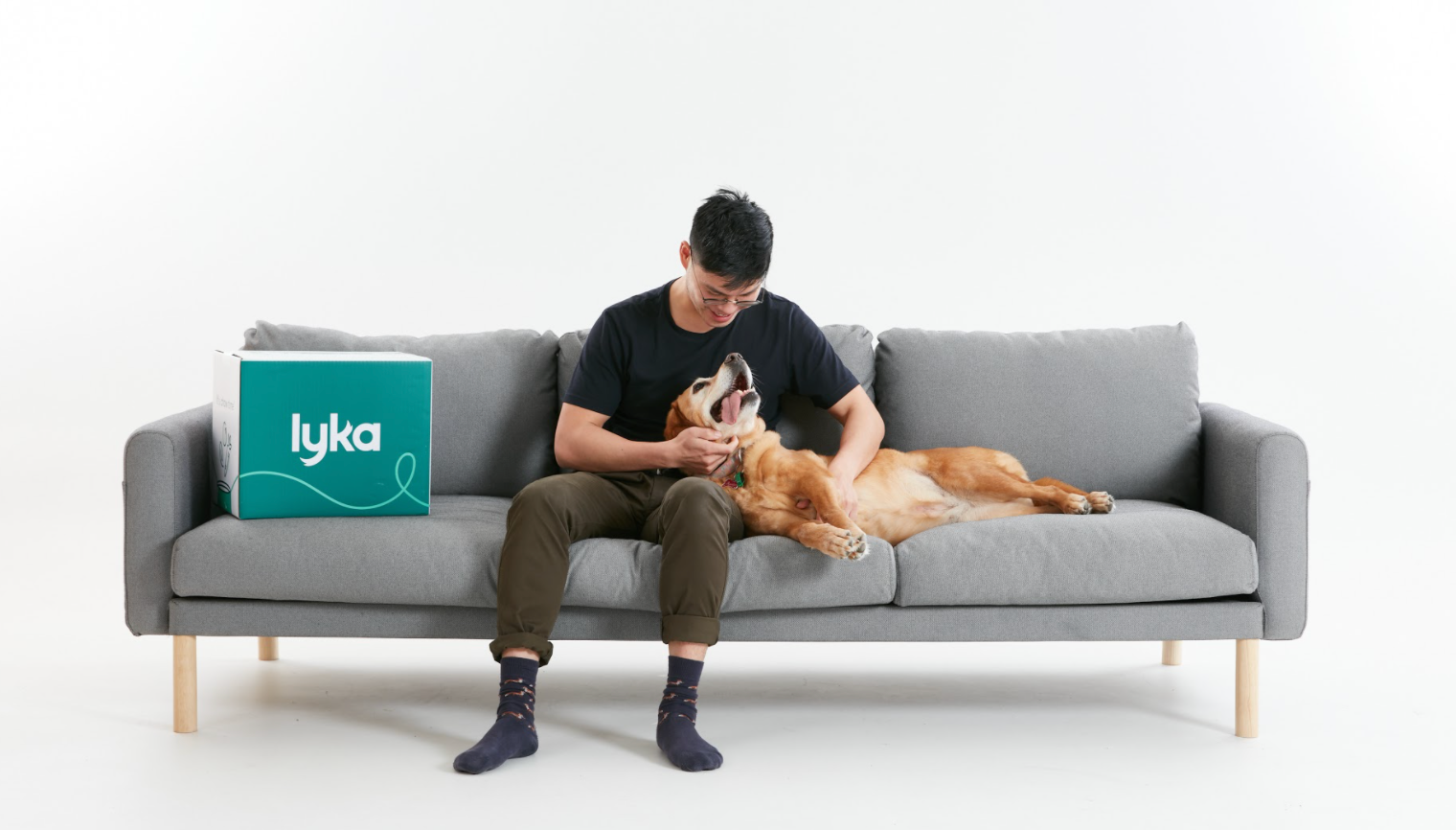 Man with dog on All Day Sofa