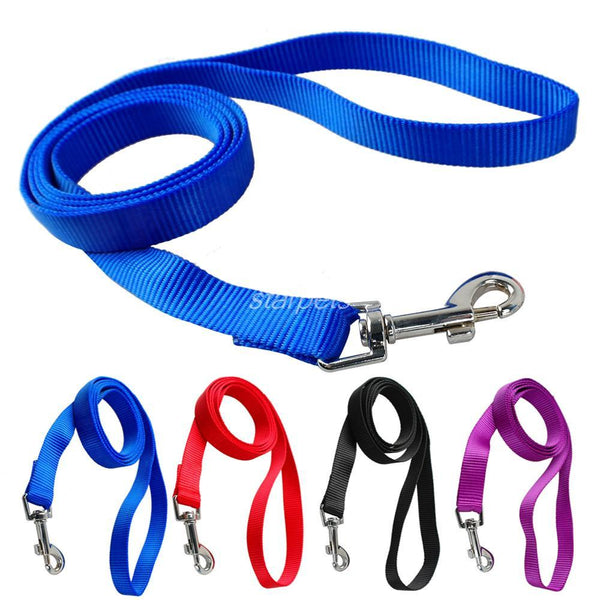 Dog Pet Leash Lead for Daily Walking 1.0cm,1.5cm,2.0cm,2.5cm Width 4 Colors