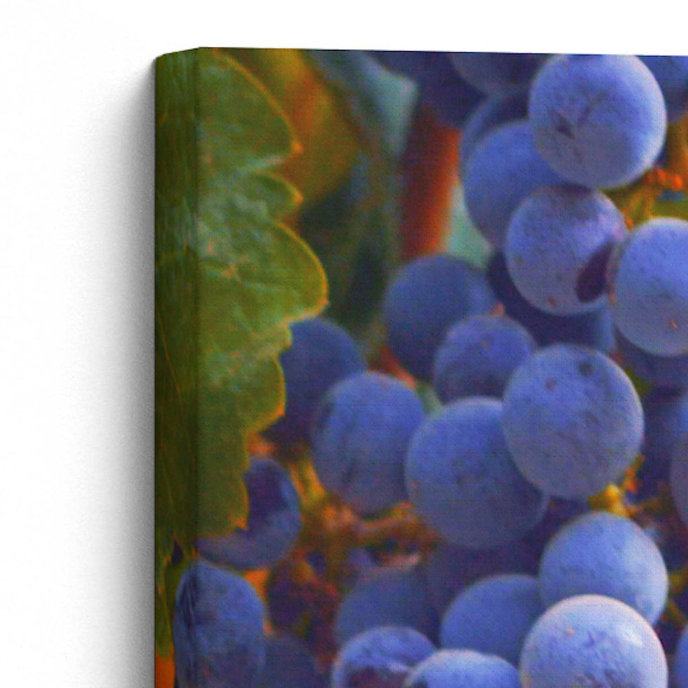 "Load image into Gallery viewer, ""I Am the Vine"" - 5x7 Tabletop Canvas Art"
