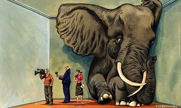 What If the Elephant In the Room, Is Not the Problem?