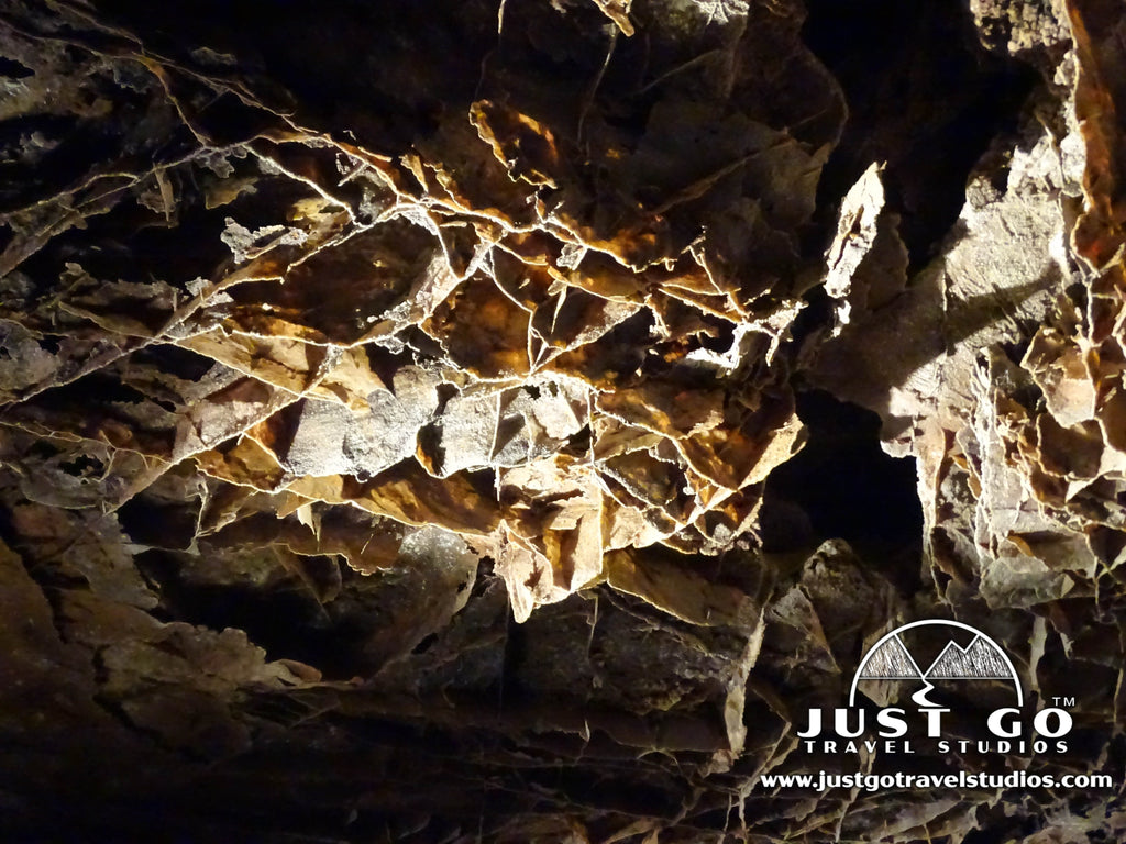Wind Cave National Park - What to See and Do