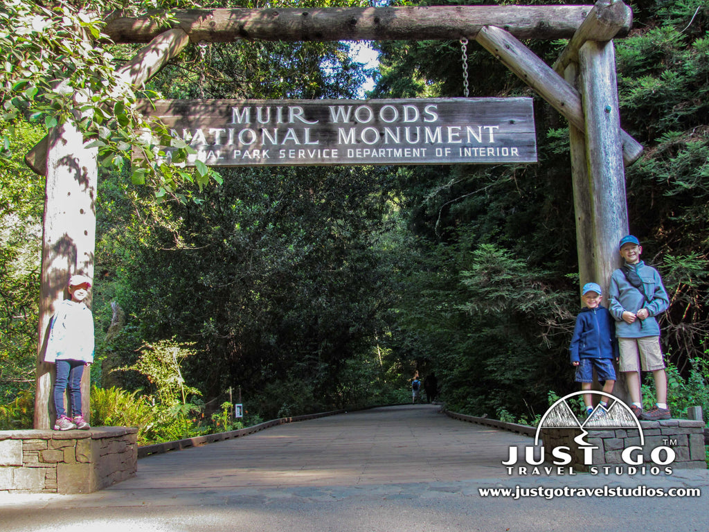 Just Go to Muir Woods National Monument - A Morning of Hiking and Exploring
