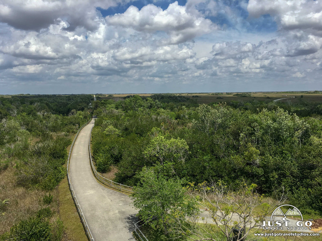 Just Go to Everglades National Park – Shark Valley