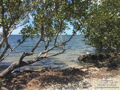 Just Go to Biscayne National Park – What to See and Do