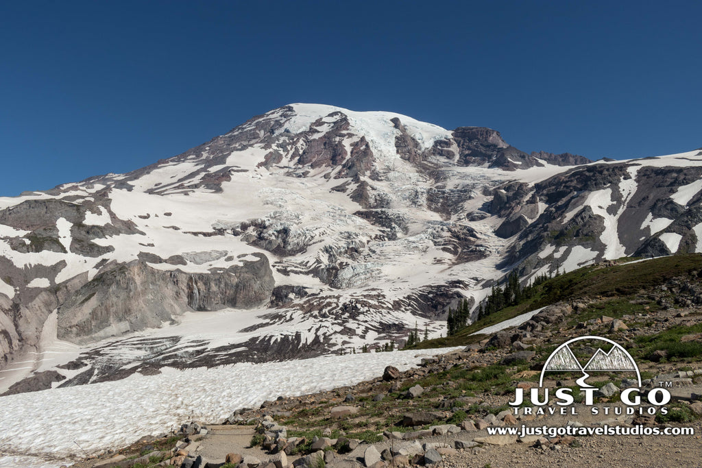 8 Reasons Why You'll Fall in Love with Mount Rainier National Park