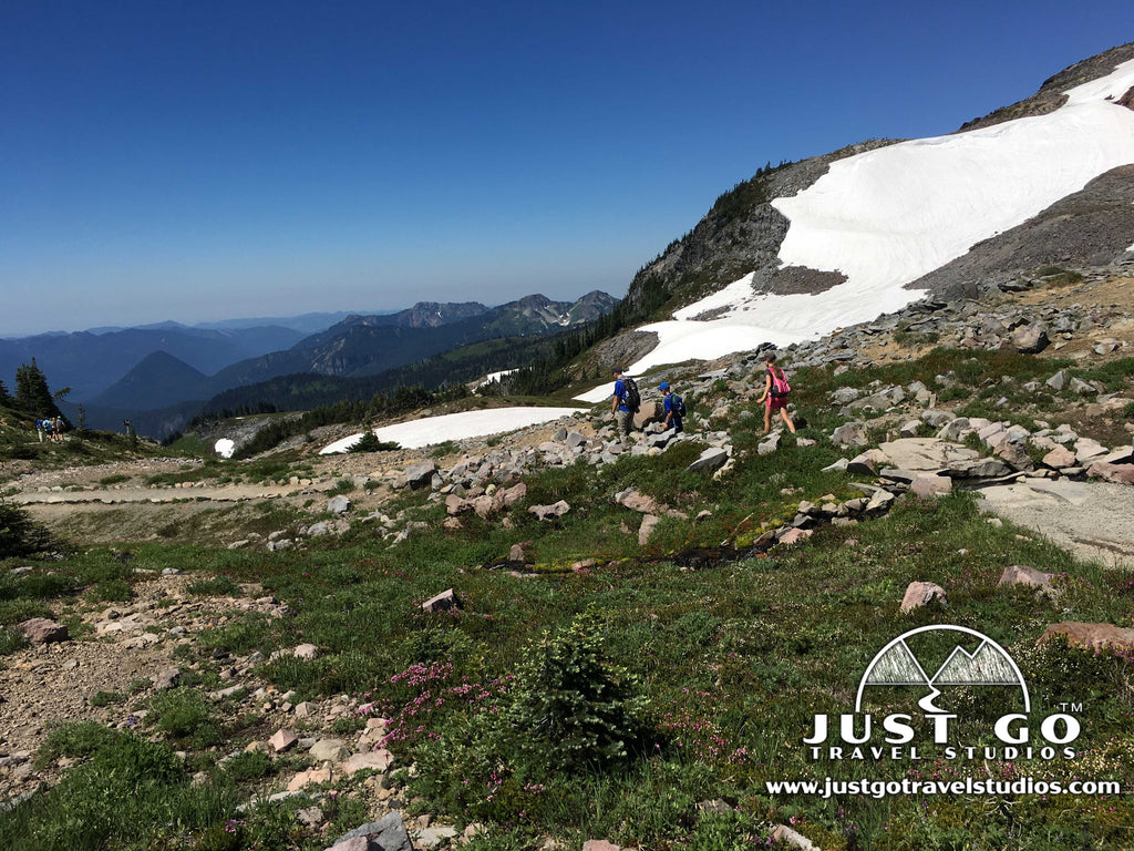 Just Go to Mount Rainier National Park - Skyline Trail to Panorama Point Hike