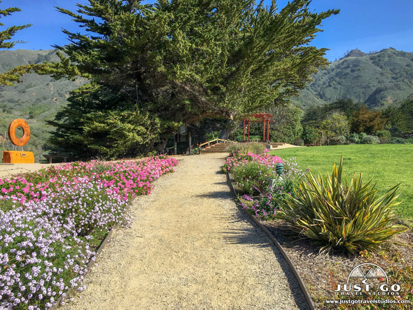 Gardens at Ragged Point in California