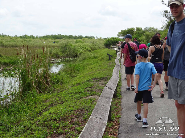 Anhinga Trail in Everglades National Park