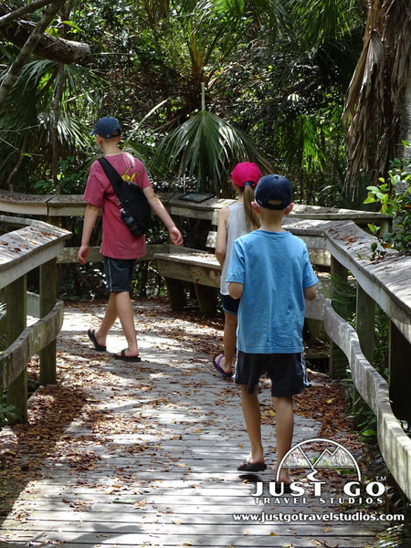 hiking on a boardwalk in Everglades National Park