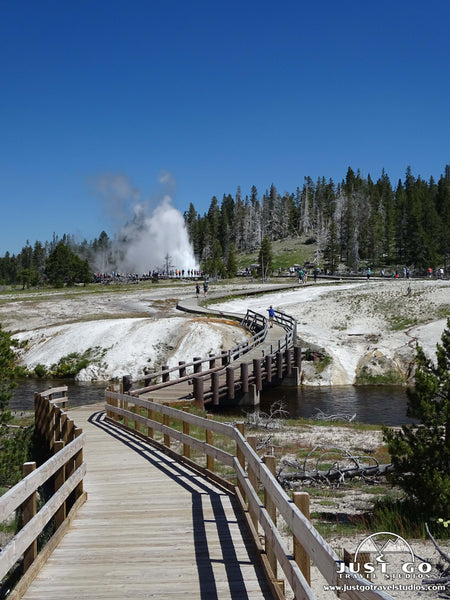 upper geyser basin trail in Yellowstone national park