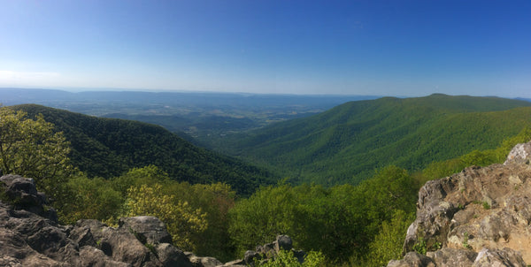 Hawksbill Mountain in Shenandoah National Park