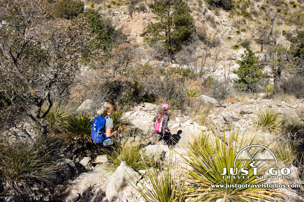 Devil's Hall Trail Hike in Guadalupe Mountains National Park