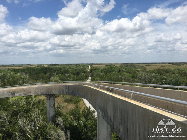 view from the tower in shark valley in Everglades National Park