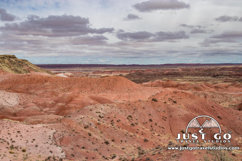 View from Tiponi Point in Petrified Forest National Park