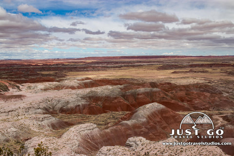 A view from Tawa Point in Petrified Forest National Park