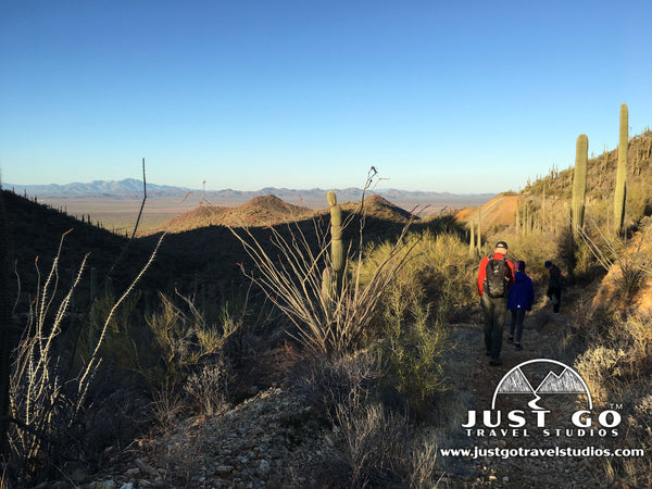 Hiking on the Gould Mine Trail in Saguaro National Park