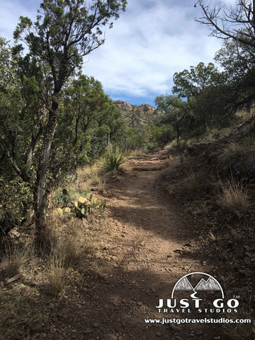 Trail conditions on the Lost Mine Trail in Big Bend National Park