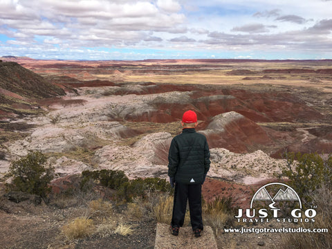 Looking over the Painted Desert in Petrified Forest National Park