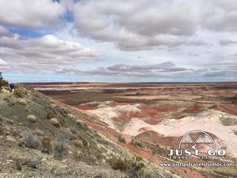 Painted Desert Rim Trail in Petrified Forest National Park