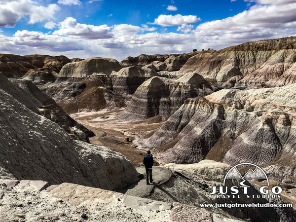 Blue Mesa Trail in Petrified Forest National Park
