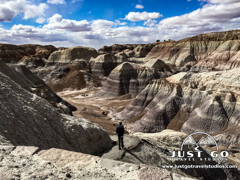 Blue Mesa hike in Petrified Forest National Park