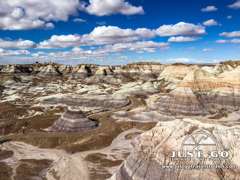 Blue Mesa overlook near the hike in Petrified Forest National Park